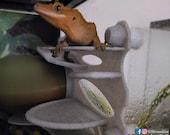 Stroodies Veranda for Geckos