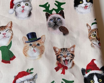 PREORDER - Christmas hat cats mask with filter pocket