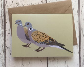 Turtle Dove greeting card | bird greeting card |  blank inside