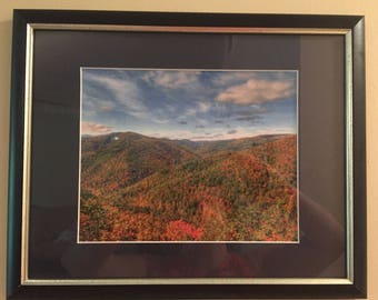 Framed Fall Folliage Photograph