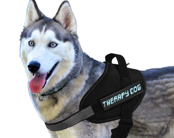 Service Therapy Dog Harness Set