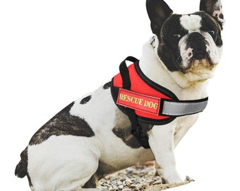 Service Rescue Dog Harness Set