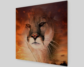 Cougar Sky Wood Print