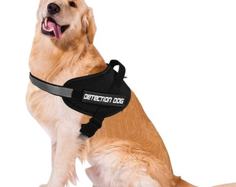 Service Detection Dog Harness and Leash