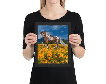Palamino Horse In Flower Field Framed poster