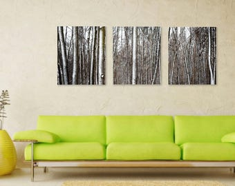 Winter Trees on Split Canvas