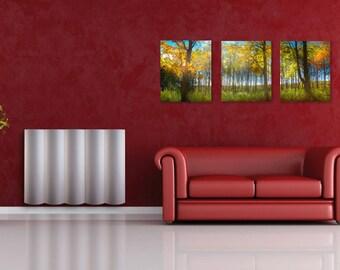 Fall Trees on Split Canvas