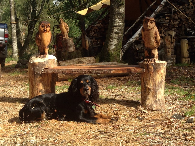 Chainsaw carved owl bench etsy