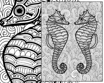 Seahorse Coloring Page Adult Sheet Ocean Colouring Pdf Book Printable Sea Digital