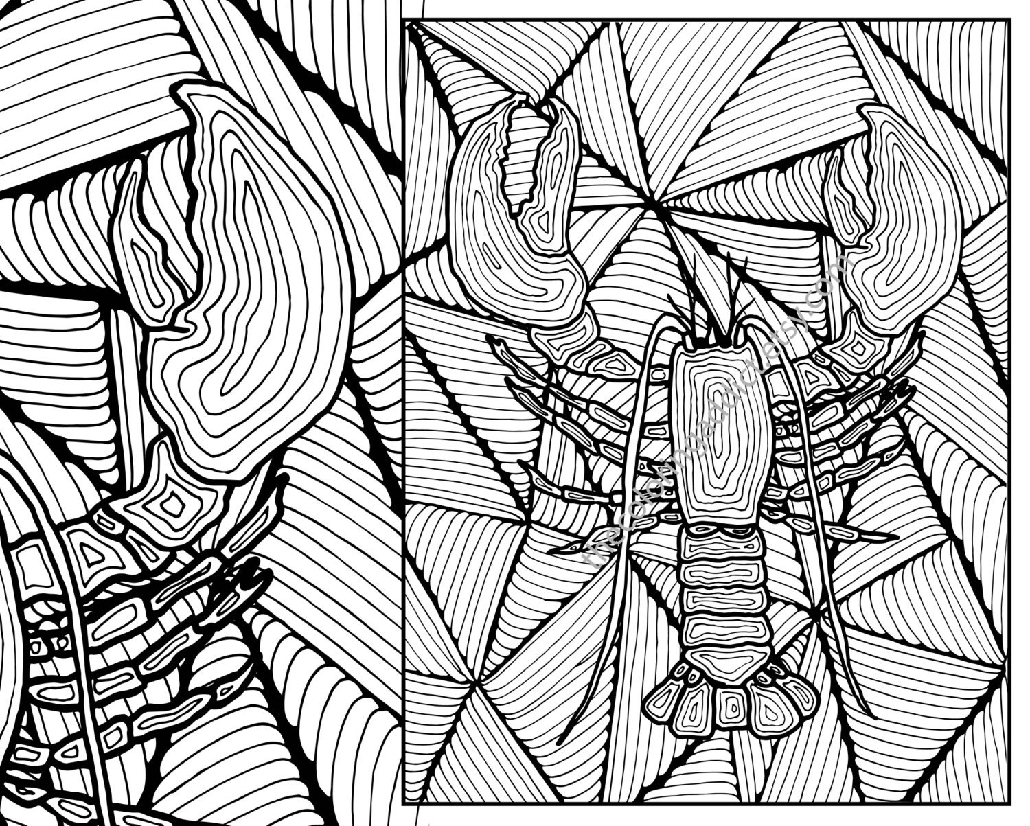 Lobster Adult Coloring Page Adult Coloring Sheet Colouring Etsy