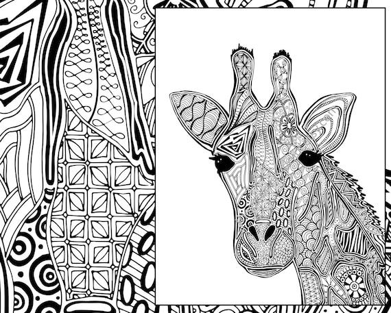 Giraffe Coloring Page Animal Adult