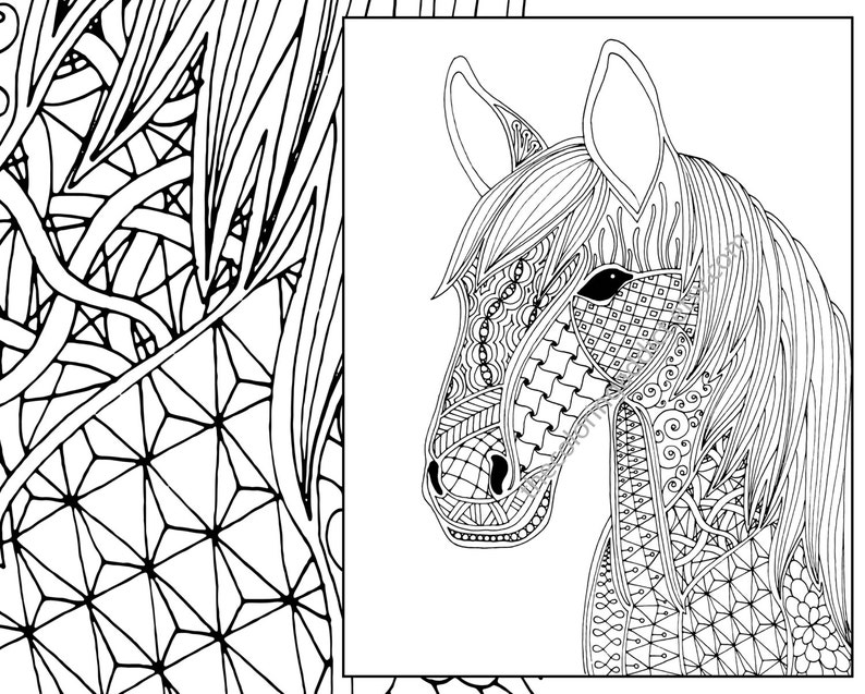 horse coloring page, animal coloring page, adult coloring page, zentangle  horse coloring, printable horse coloring, digital coloring page