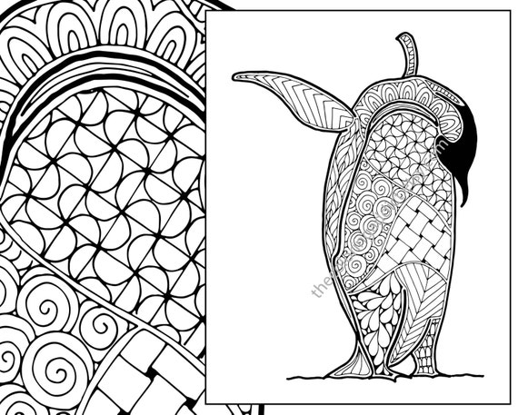 Penguin Coloring Sheet Animal Coloring Pdf Zentangle Etsy