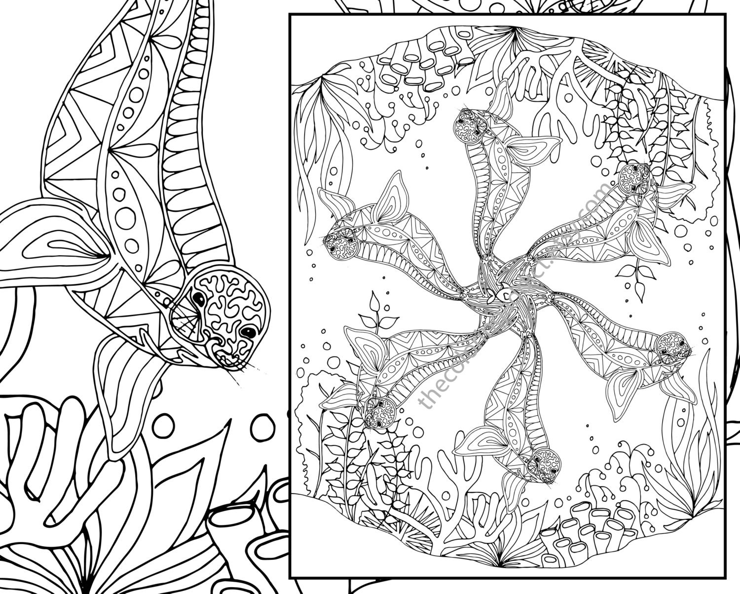 Adult Coloring Page Adult Coloring Sheet Seal Colouring Etsy