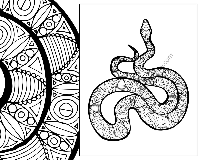 snake coloring sheet animal coloring pdf zentangle adult etsy. Black Bedroom Furniture Sets. Home Design Ideas
