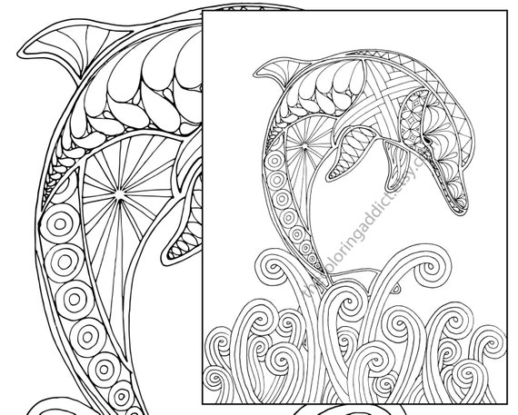 Dolphin Coloring Page Adult Sheet Nautical