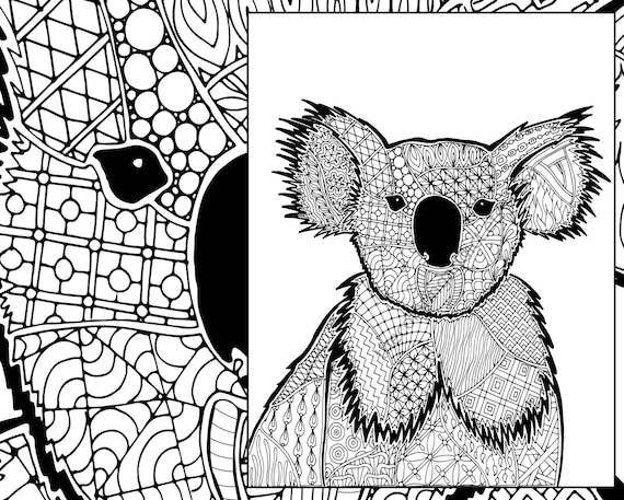 Koala Coloring Sheet Animal Coloring Pdf Zentangle Colouring Etsy