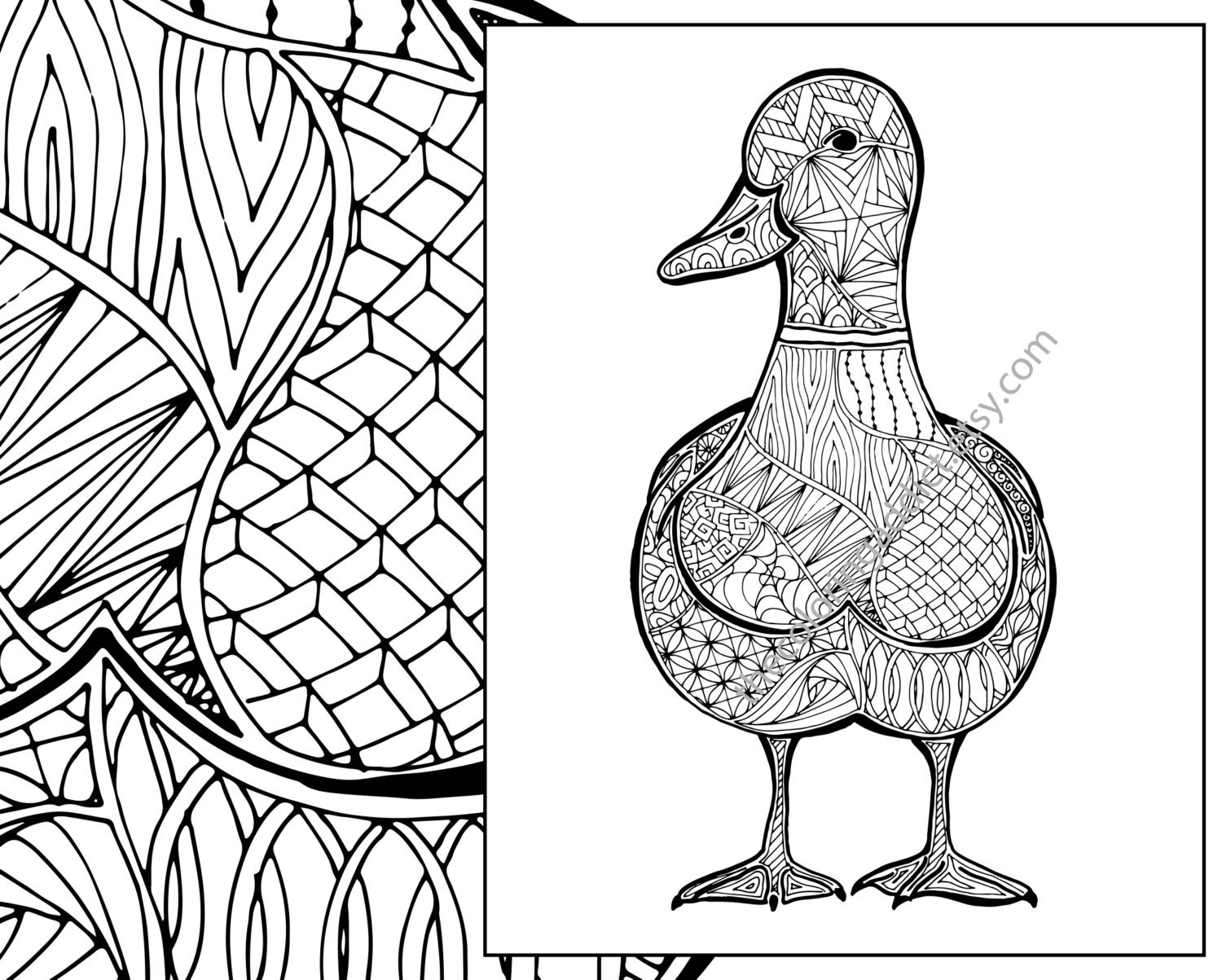 Zentangle Duck Colouring Page Animal