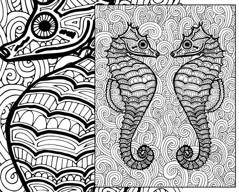 Seahorse coloring page adult coloring sheet ocean colouring | Etsy