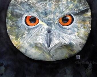 Owl  - Original painting - Animals - original transparent Watercolor - Size 40 x 62 cm - vegan & plastic free