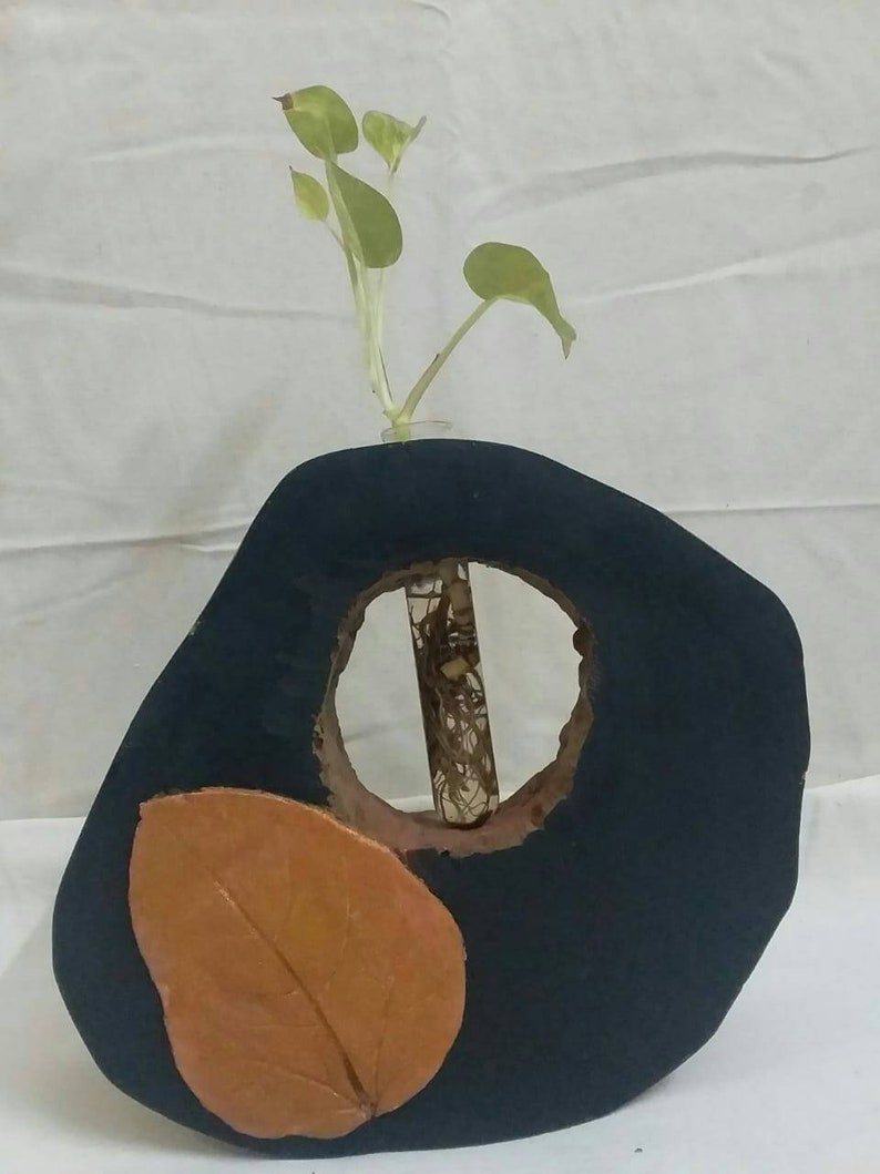 Plant in Tree      experience miracles happening in NATURE  Nuture inspired  Flower vase for your home decor, made of fire wood log
