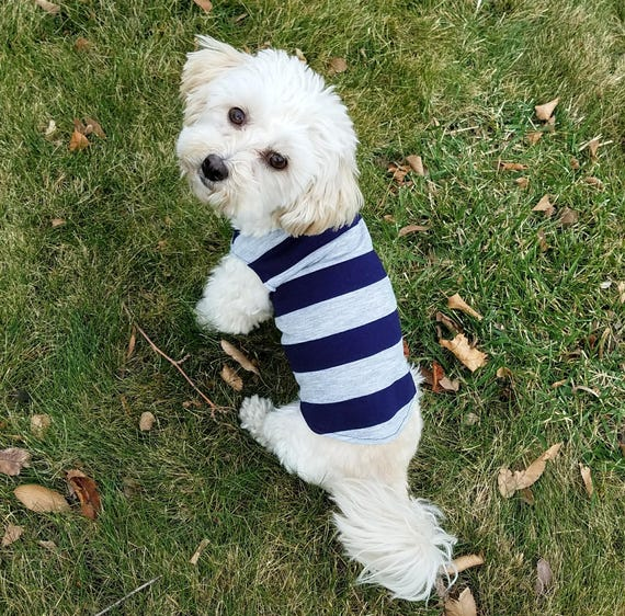 Yorkie Clothes Dog Tshirts For Dogs Striped Dog Shirt Cute Etsy