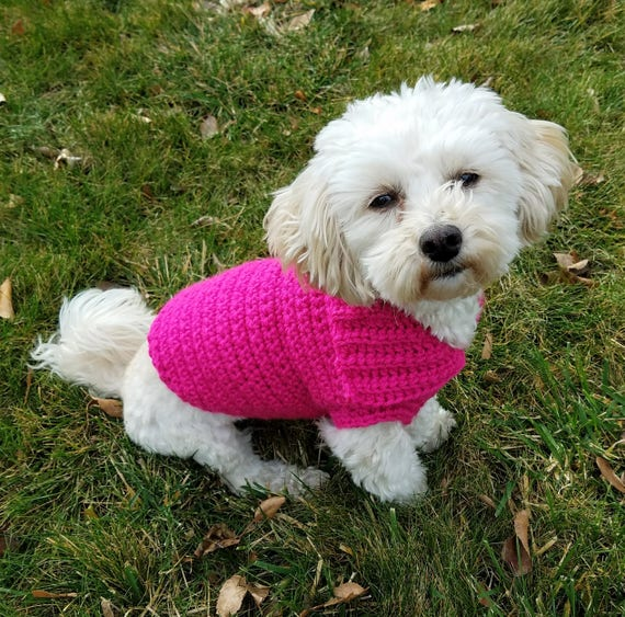 custom dog sweater small dog clothes pink dog coat pink dog vest teacup dog clothes yorkie clothes whippet sweater dachshund clothes