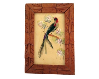 Real Framed Feathers, Mexican Feathers, Mexico Feathers, Feather Art,  Feather Home Décor, Real Bird Feathers, Feather Wall Hanging, Bird