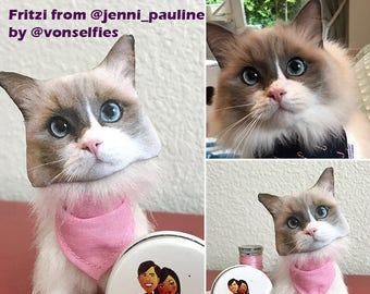 Cat Lover Gift- A Personalized Pet- Stuffed Cat Toy Ragdoll Persian