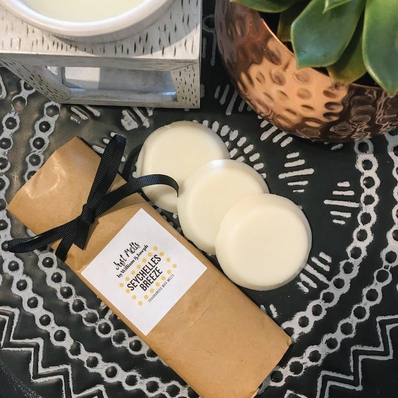 Seychelles Breeze Soy Wax Melts Plastic Free Wax Melts UK image 0