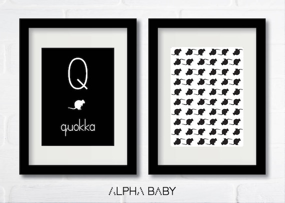 Q for QUOKKA Poster Set