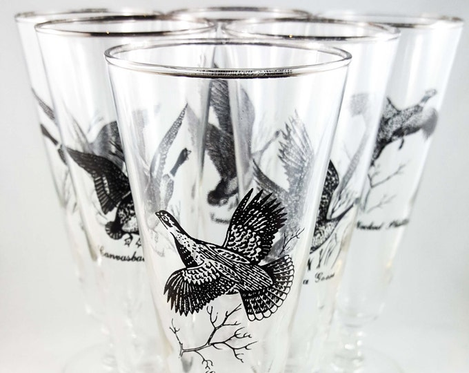 Man Cave Bonanza!! Set of 6 Vintage Game Bird Beer Glasses with Silver Rim