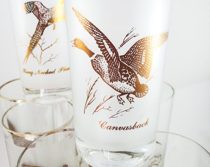 Set of 7 Frosted Vintage Game Bird Glasses with Gold Rims and Various Wild Game Birds on the  Glasses