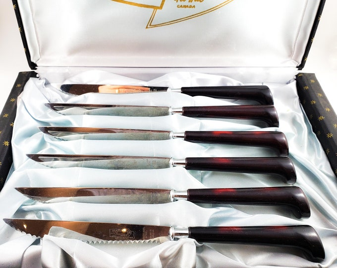 Beautiful Set of Vintage Antique MCM Acrylic Gourmates Bakelite Steak Knives from Glo-Hill Canada in Original Box Knives in Stand.