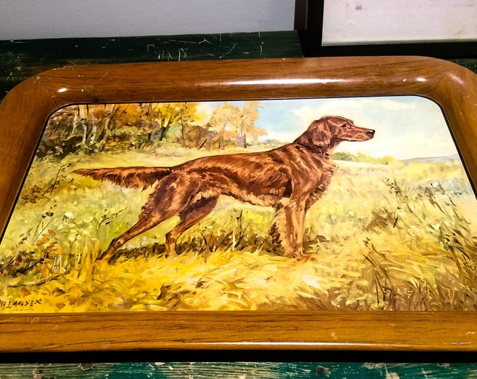 Vintage 1950's Tin Cocktail or Serving Tray with Irish Setter