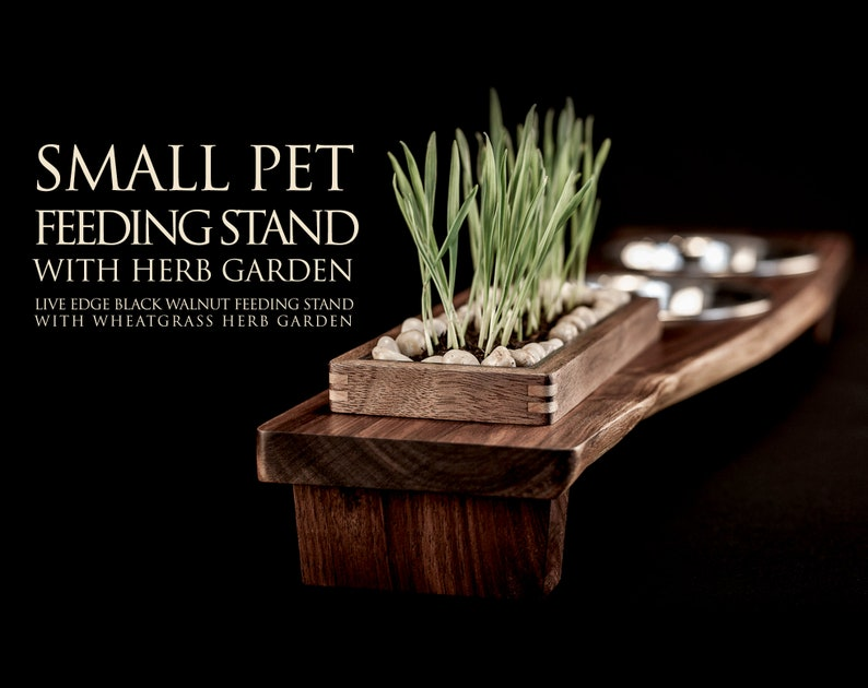 Live Edge Walnut Elevated Small Pet Feeding Stand with Wheatgrass Planter