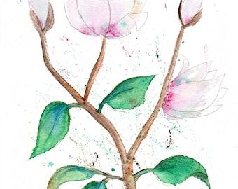 magnolia flower watercolour painting original