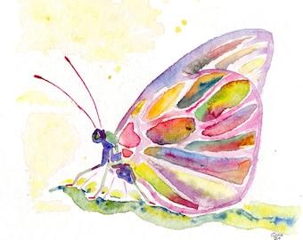 Butterfly Aquarell Original oder Kunstkarte