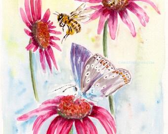 Bläuling Schmetterling Echinacaea Aquarell Druck Print intuitiv