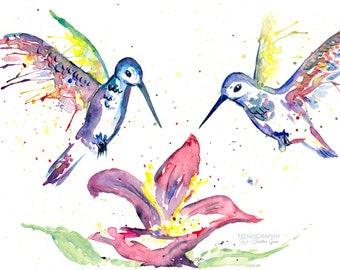 Humingbird bird watercolour original painting