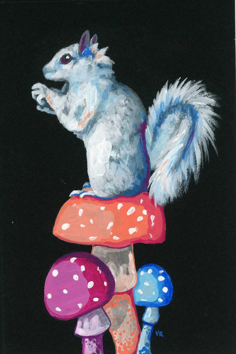 White or Black Squirrel Greeting Card image 0