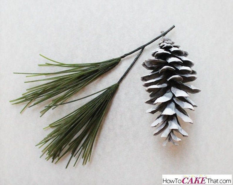 The EASY Pine Needle Tutorial For cake decorating image 0