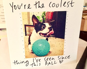 You're the Coolest Thing I've Seen Since This Ball Card, Boston Terrier Love card