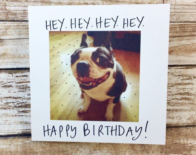 Happy birthday card funny, happy birthday card unique, card for him, card for her, boston terrier, funny birthday card, unique birthday card