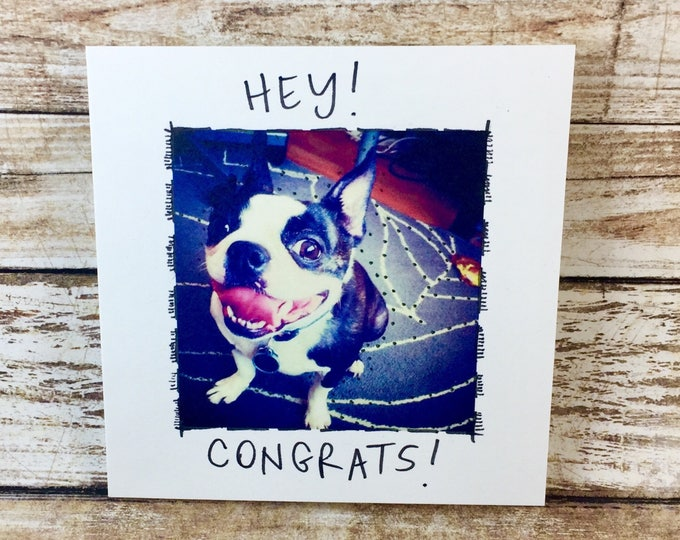 Boston Terrier Card, congrats, congrats on baby, congratulations, wedding congrats, congrats on new job, congrats grad, sidesandwich, dog