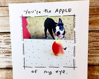 You're the Apple of my Eye, Boston Terrier Love Card