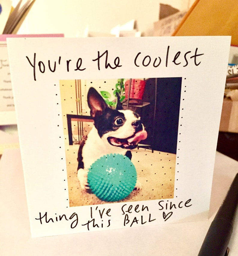 You're the Coolest Thing I've Seen Since This Ball image 0