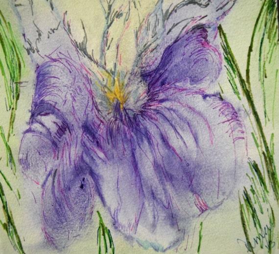 Watercolor painting, Iris