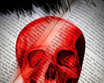 Red Skull Clear Bookmark Skeleton Goth Gothic Halloween Horror Creepy Spooky Anatomy Oddities