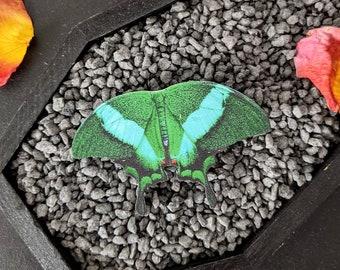 Emerald Swallowtail Butterfly Hair Clip Barrette Papilio Palinurus Moth Nature Bridesmaid Gift Wedding Gift Wearable Art Shrink Plastic
